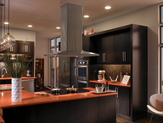 Stainless Euro Design, Island Hood & Cooktop