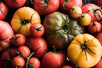 Subzero_Tomatoes-3_TRG_052218